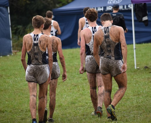 Muddy Lessons Learned in Chicago