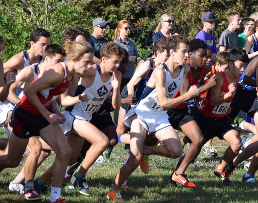 District & Sectional Recap